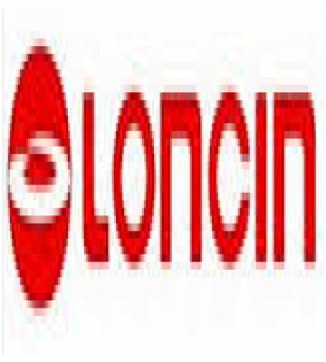 GENERADOR ELECTRICO LONCIN LC-13000 220 V. GASOLINA PROCIM S.P. A.